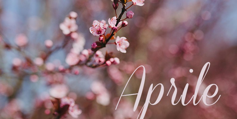 Sposarsi in aprile