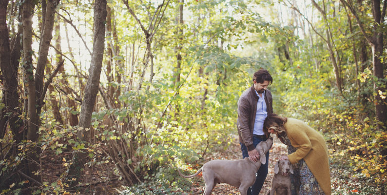 Foto gravidanza nel bosco di Mestre – ottobre