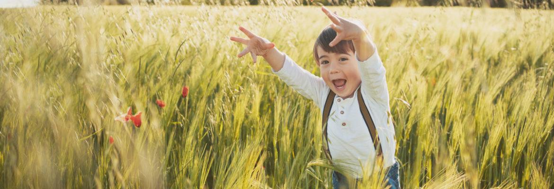 Campi di grano e papaveri delicati. Profumo di famiglia